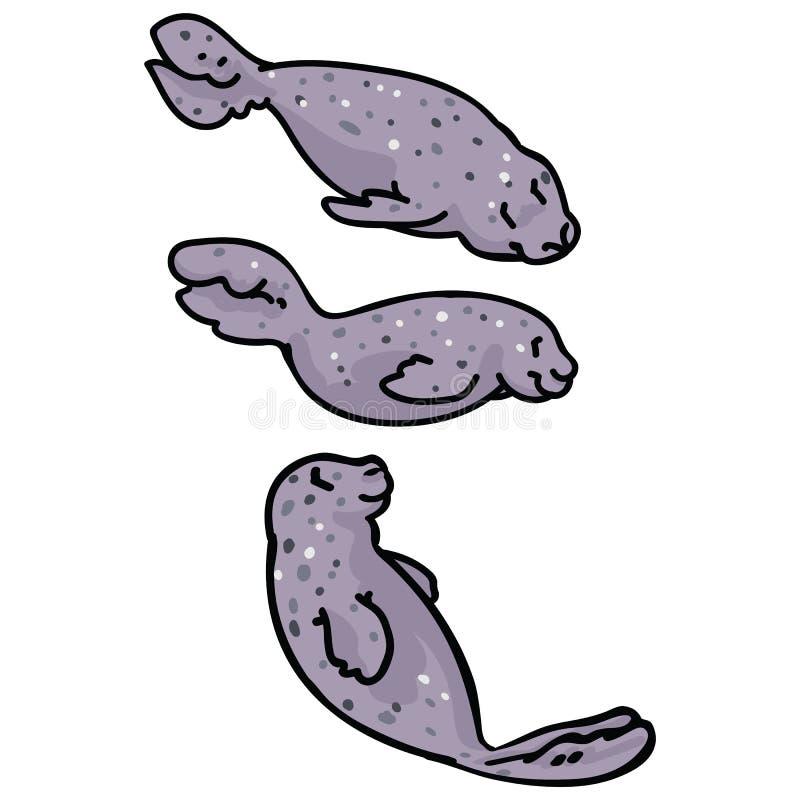 Cute group of light grey seals. Ocean mammal sea life clipart stock illustration