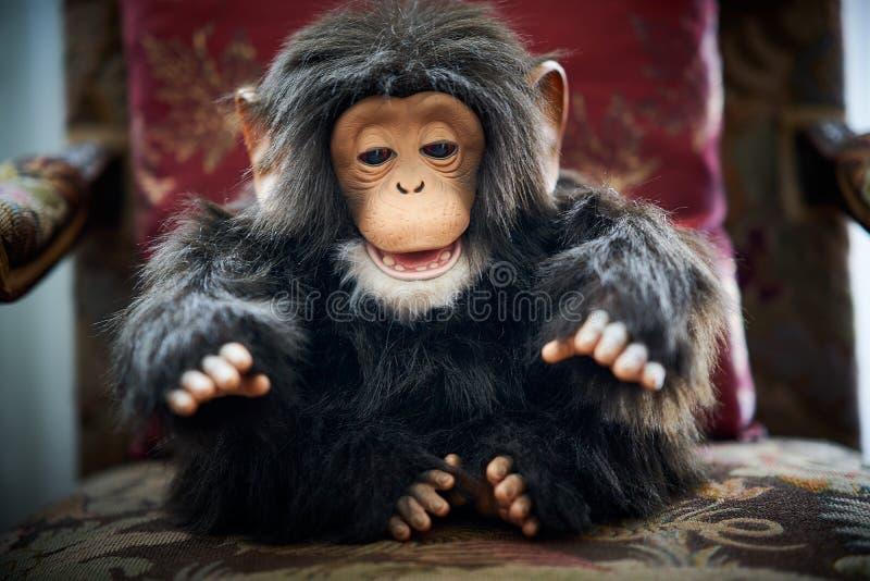 Cute hairy retro monkey toy. Doll royalty free stock image