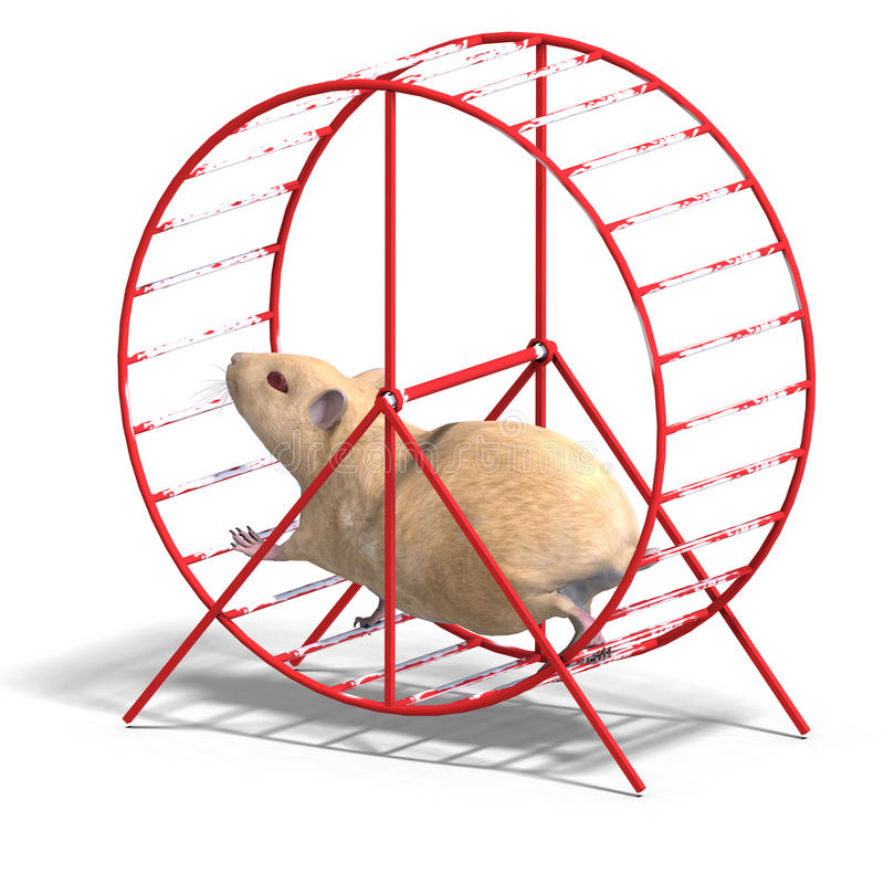 Free Cute Hamster In A Hamster Wheel Stock Image - 10434221