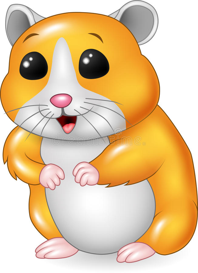 Cute hamster posing on white background. Illustration of Cute hamster posing on white background royalty free illustration
