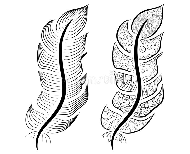 Cute hand drawn feather collection in scandinavian style vector illustration