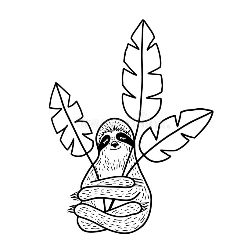 Cute hand drawn sloth sleeping and hugging troplical leaves. Outline doodle style. Vector illustration stock images