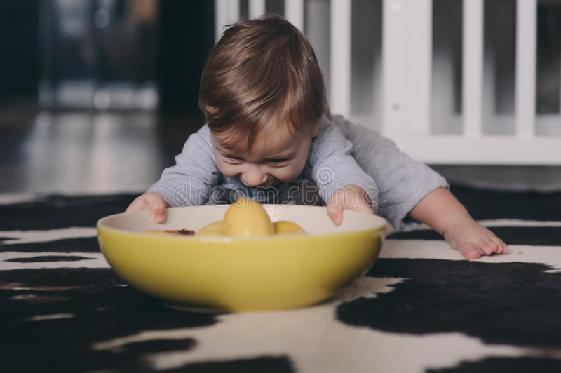 Cute happy baby boy eating cookies at home and playing with plate of lemons. Lifestyle indoor capture royalty free stock image