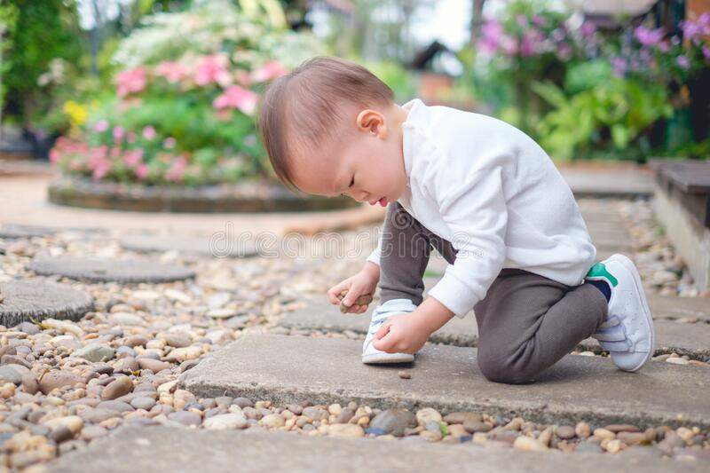 Cute happy & curious little Asian 1 year / 18 months old toddler baby boy child sitting on in the beautiful flowers garden holding stock image