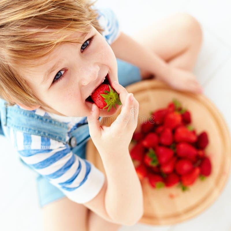 Cute happy kid eating tasty ripe strawberries. Cute happy kid, boy eating tasty ripe strawberries stock photo