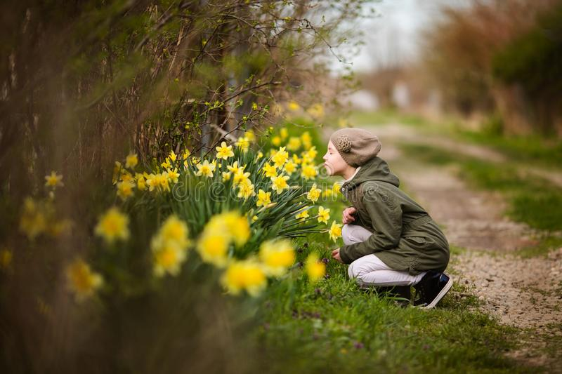 Cute happy little girl in the spring country smelling yellow daffodils stock photography