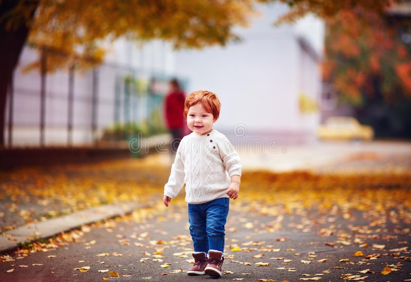 Cute redhead toddler baby boy walking among fallen leaves in autumn city park. Cute happy redhead toddler baby boy walking among fallen leaves in autumn city royalty free stock photo