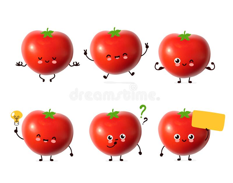 Cute happy tomato vegetable bundle set. Cartoon character illustration design with hand drawing graphic elements. Isolated on whit. E background. Red fresh stock photography
