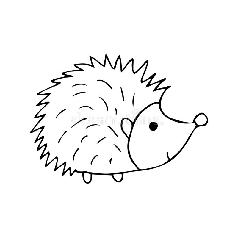 Cute hedgehog black and white doodle illustration. On white background. Forest animal with prickly needles vector stock illustration
