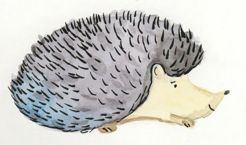 Cute hedgehog hand painted royalty free stock photography