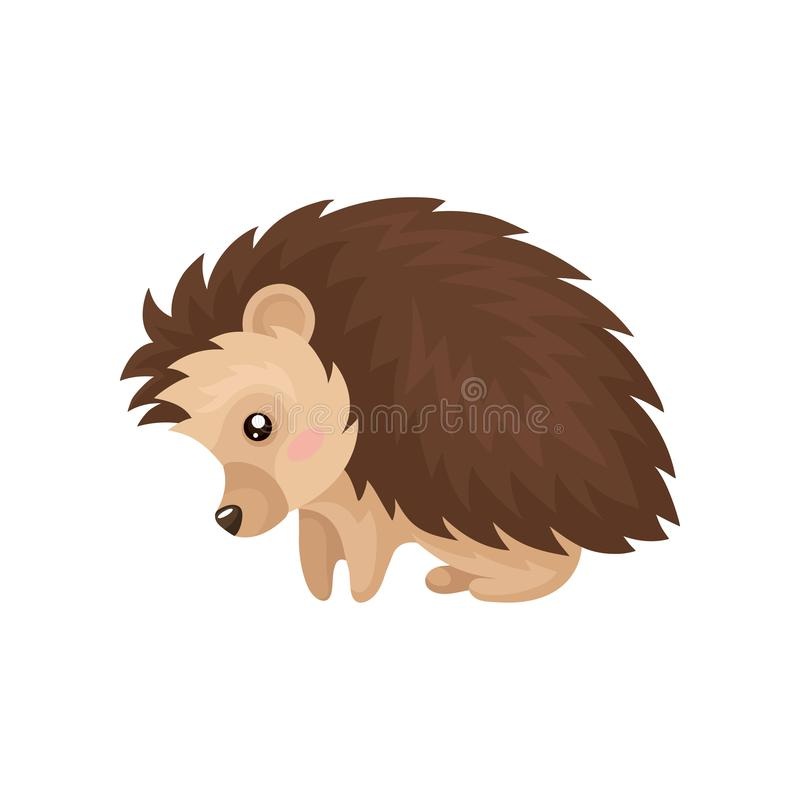 Cute hedgehog, lovely prickly animal cartoon character vector Illustration on a white background vector illustration