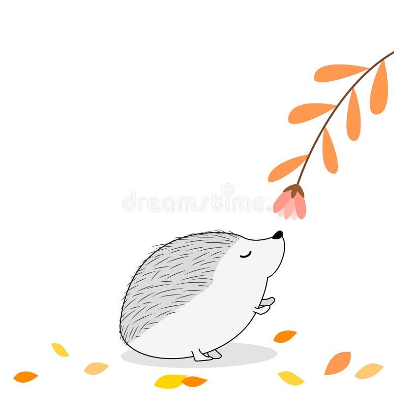 Cute Hedgehog smelling a flower stock images