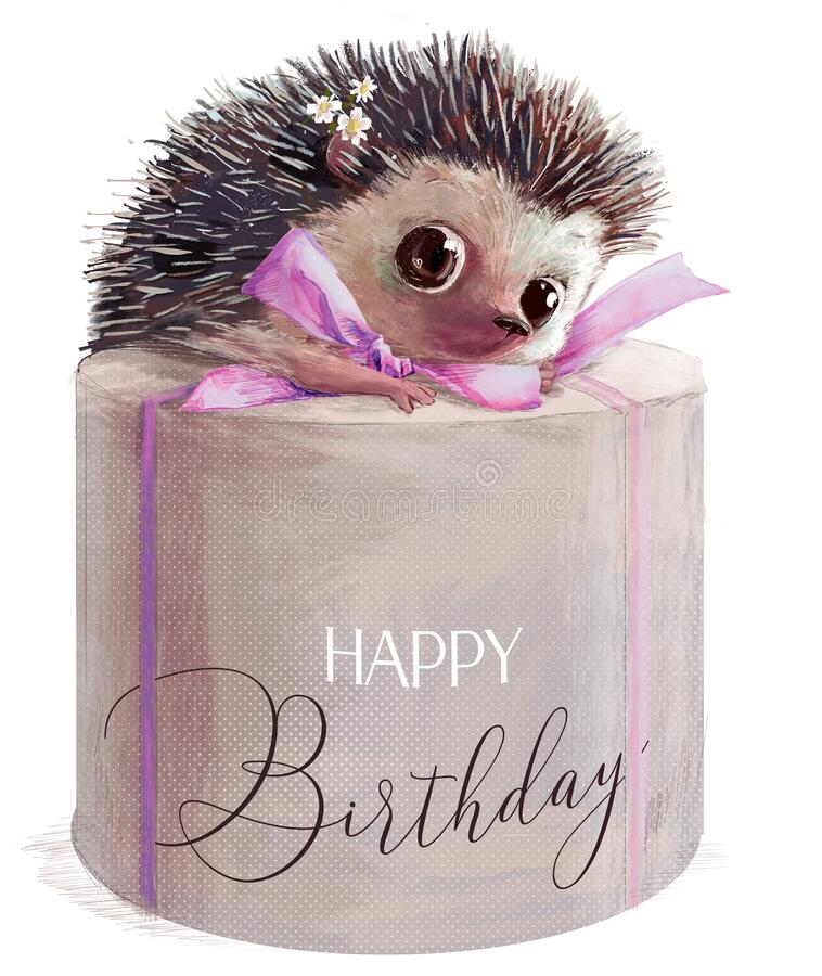 Free Cute Hedgehog With Present Pink Birthday Box Royalty Free Stock Photo - 198590855