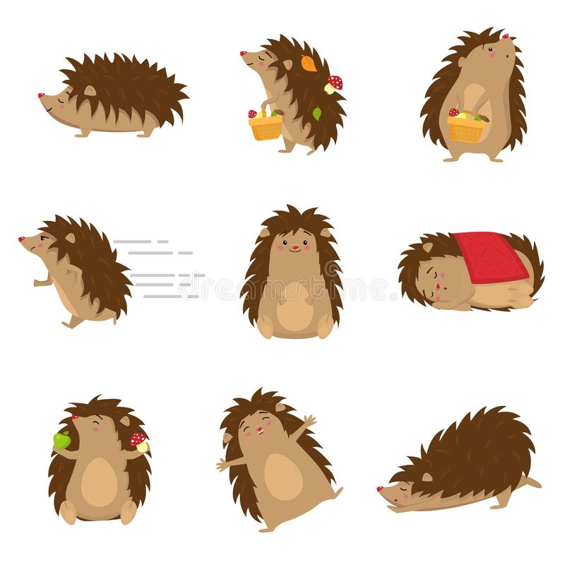 Cute hedgehogs in different poses set isolated on white background royalty free stock photography