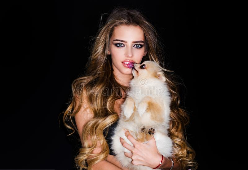 Cute house dog with beauty woman. Pomeranian dog or puppy pet. Portrait of model with beauty make up on gorgeous face. Beauty portrait of female face with stock image