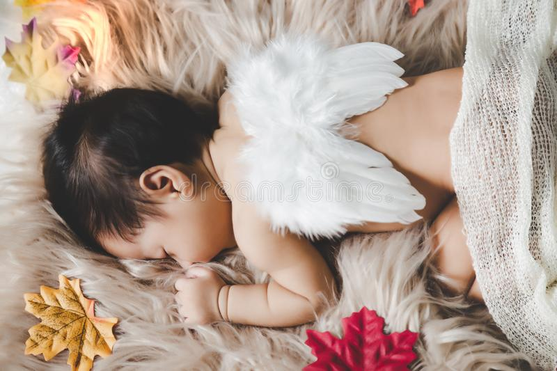 Cute infant baby girl or little angel girl sleeping on cozy bed, carpet. Lovely asian infant wear wings on back with maple leaf stock images