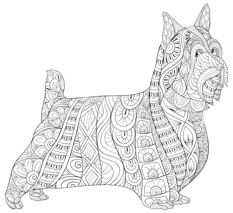 Adult coloring book,page a cute isolated dog for relaxing.Zen art style illustration. A cute isolated dog with floral ornaments for relaxing.Poster design vector illustration