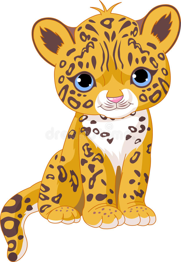 Free Cute Jaguar Cub Stock Photography - 14956942