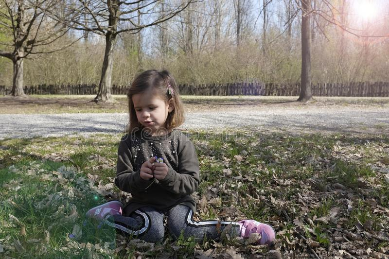 Cute kid girl 4-5 year old sitting under tree in park.  Autumn season. Childhood royalty free stock images