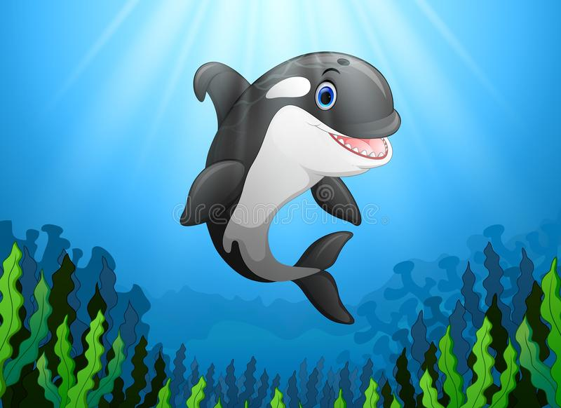 Cute killer whale under water. Illustration of Cute killer whale under water royalty free illustration