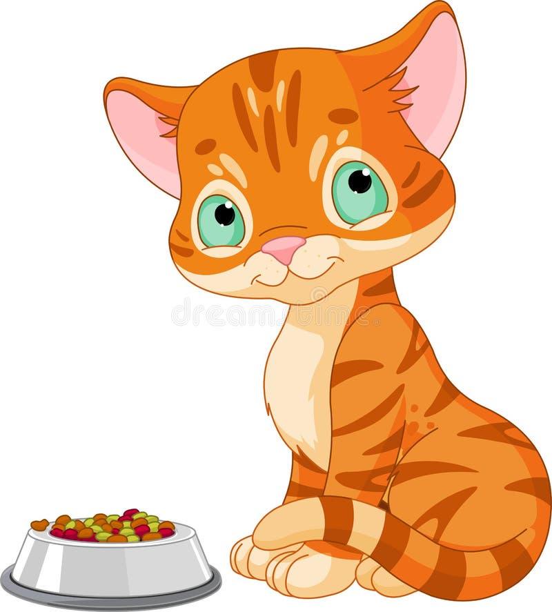 Cute Kitten. Cute striped kitten near the cats food bowl