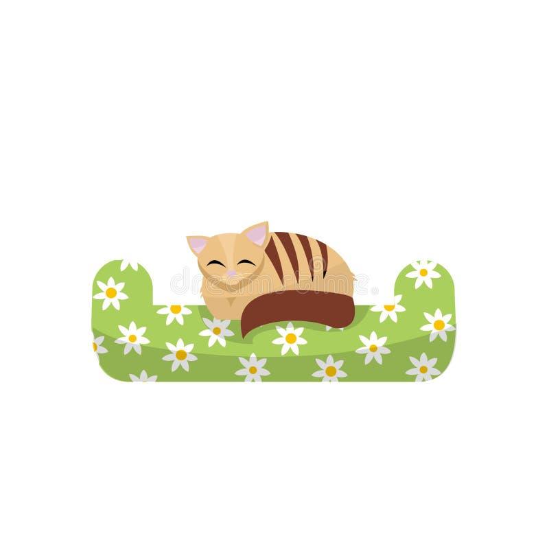 Cute kitten sleeping on the green pillow with daisies pattern. Flan cartoon vector illustration. Cat hand draw animal, t-shirt royalty free illustration