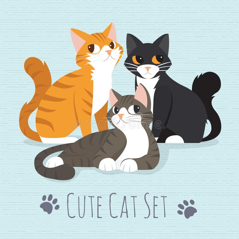 Cute kitty cat royalty free stock image