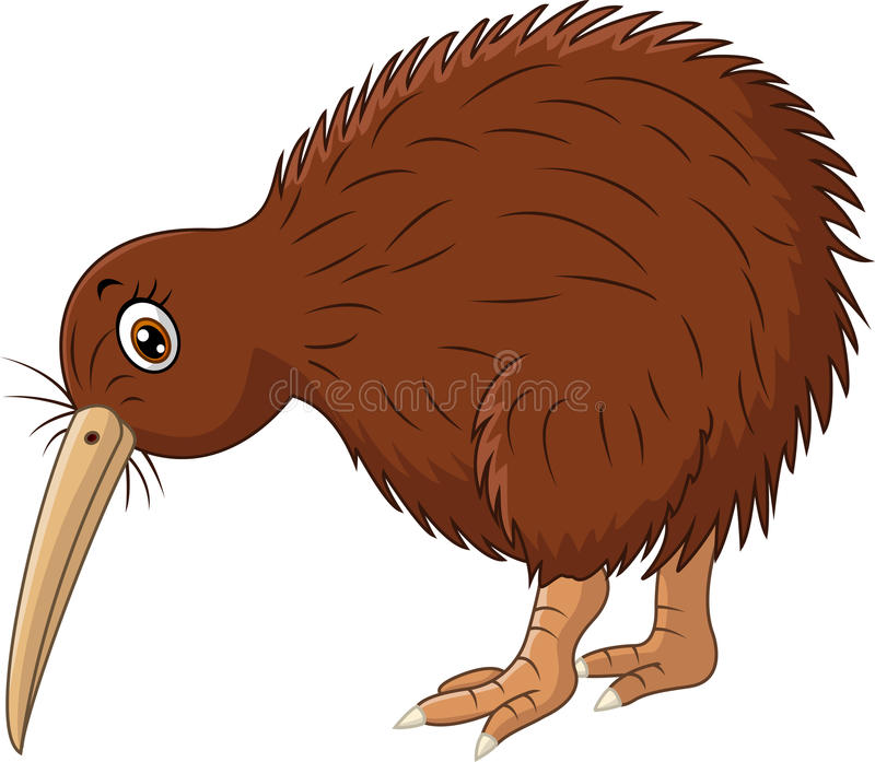 Cute kiwi bird cartoon royalty free illustration