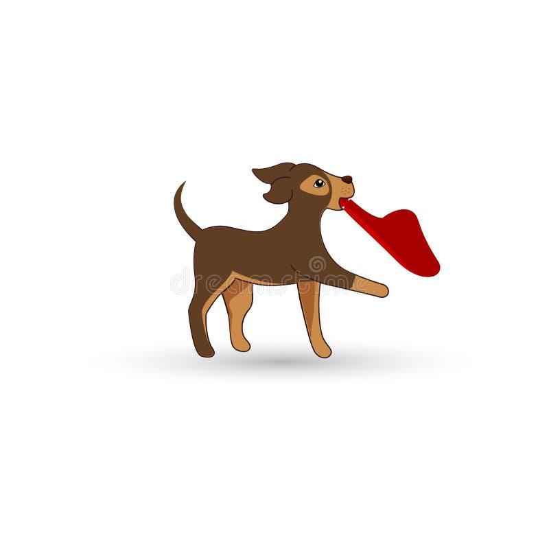Cute kleine Hunde mit Hausschuhen lizenzfreie stockfotos