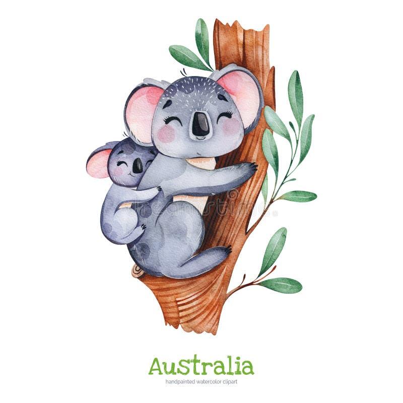 Cute koala with baby on eucalyptus tree. vector illustration