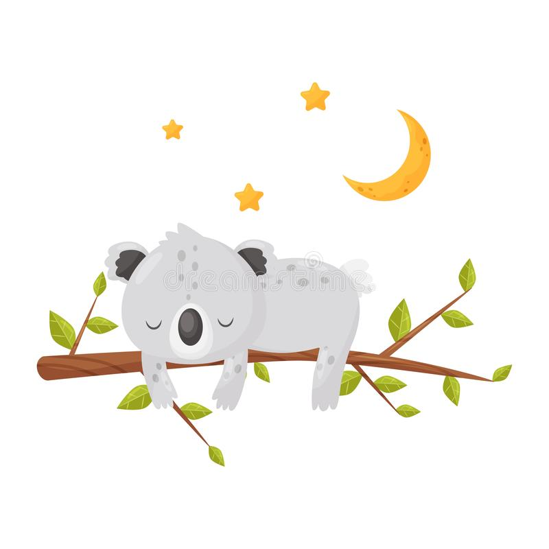 Cute koala bear sleeping on a branch under a starry sky, lovely animal cartoon character, good night design element stock illustration