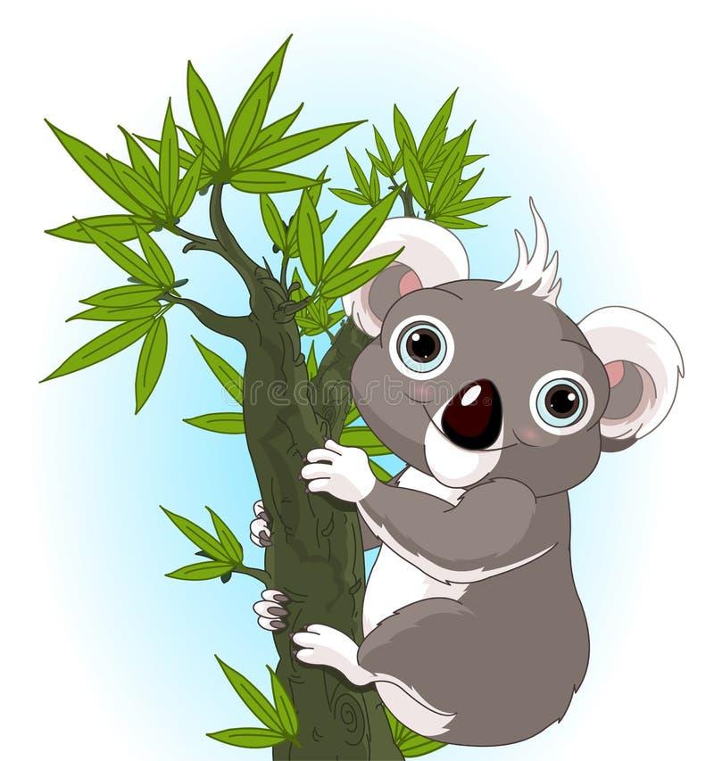 Free Cute Koala On A Tree Stock Images - 37579614