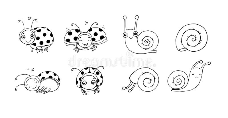 Cute ladybug and snail cartoon. Funny insects set vector illustration