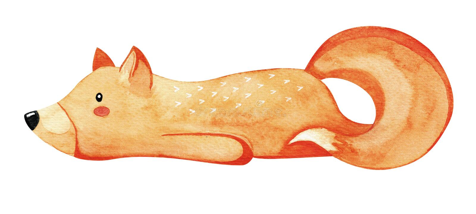 Cute lazy fox. Red fox isolated on white background. Watercolor. Cute lazy fox. Red fox isolated on white background. Watercolor royalty free illustration