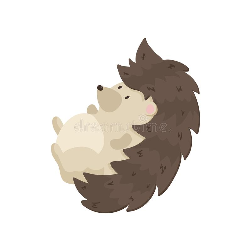 Cute hedgehog lies on his back and swinging. Close-up on a white background. stock illustration