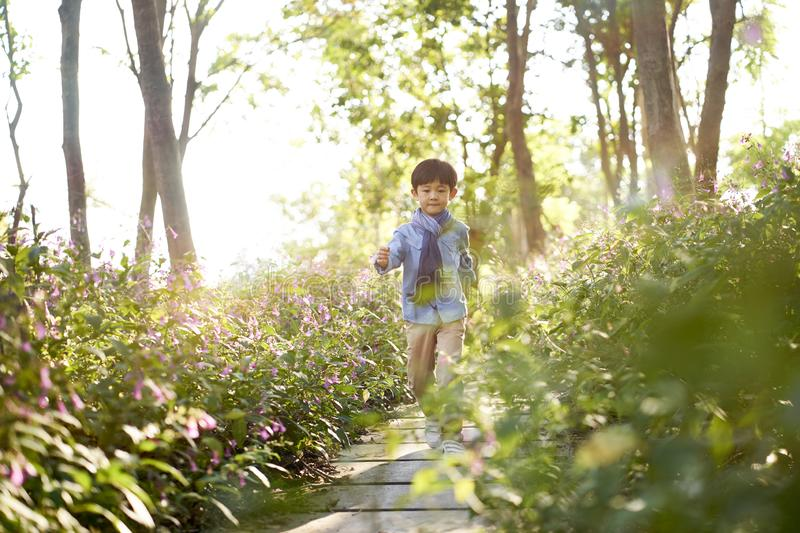 Cute little asian boy walking in flower field royalty free stock image