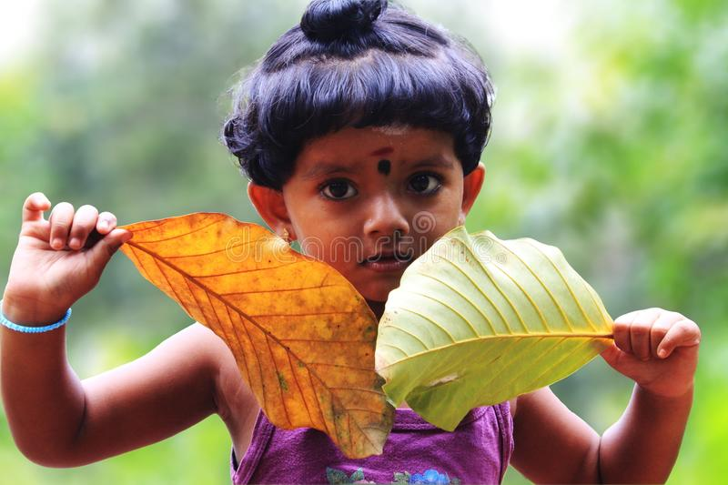 Cute little asian girl child plays with leaves royalty free stock photo