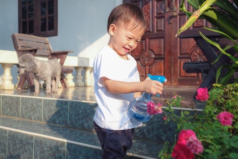 Toddler boy child having fun using spray bottle watering pink rose flowers stock photos