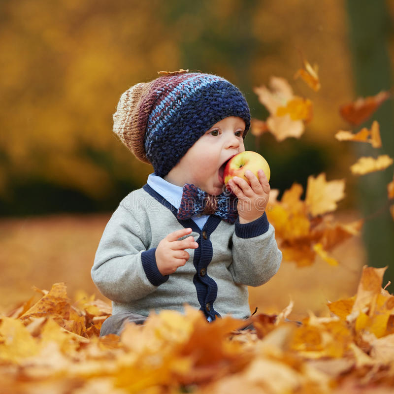 Cute little baby in autumn park royalty free stock photos