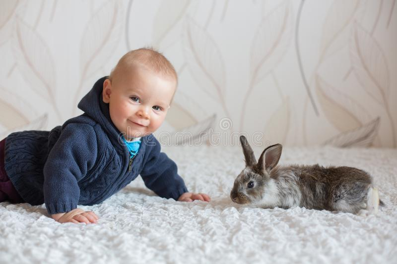 Cute little baby boy, playing with pet rabbits at home royalty free stock images