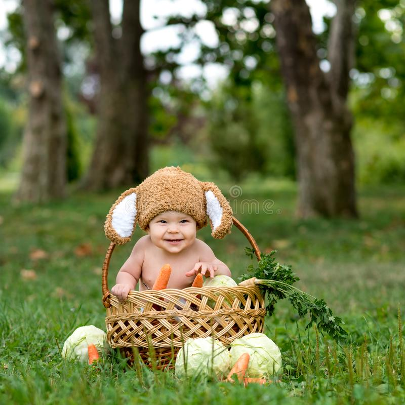 Cute little baby boy in suit of rabbit sitting on the grass in basket with cabbage and carrot. Nature park. Background stock image