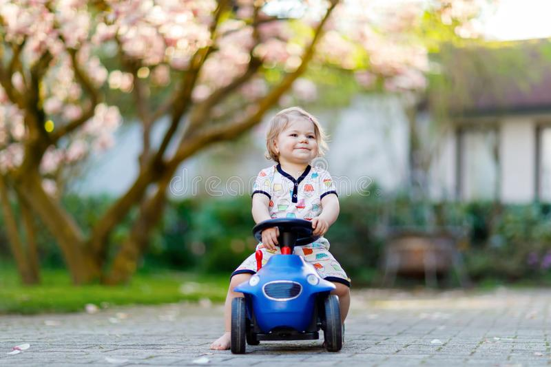 Cute little baby girl playing with blue small toy car in garden of home or nursery. Adorable beautiful toddler child. With blossoming magnolia on background royalty free stock image