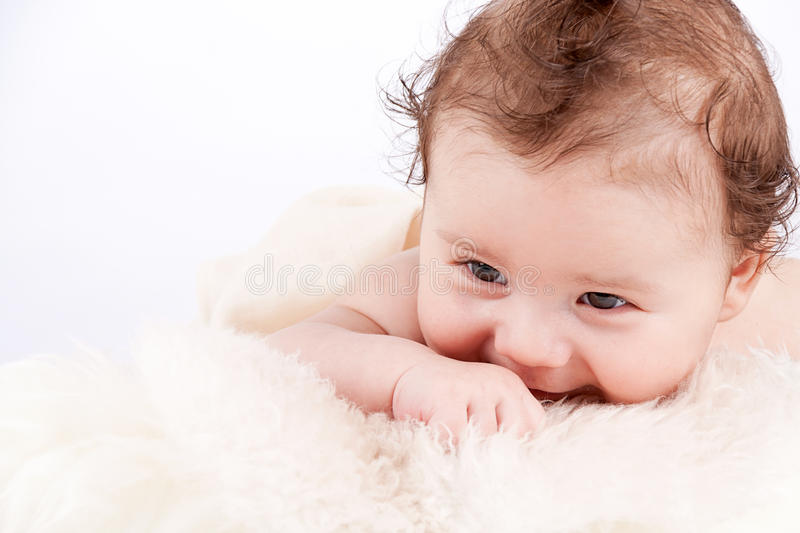 Download Cute Little Baby Infant Toddler On White Blanket Portrait Stock Photo - Image: 29150668