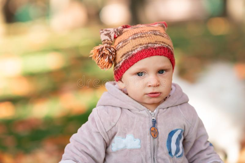 Cute little baby playing in autumn leaves stock photography