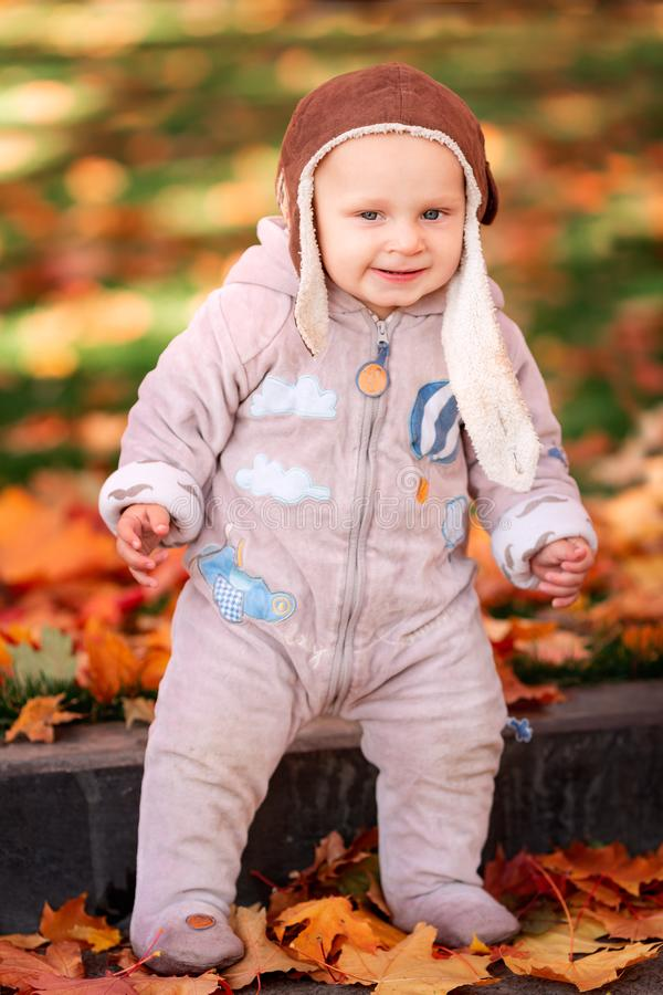 Cute little baby playing in autumn leaves stock image