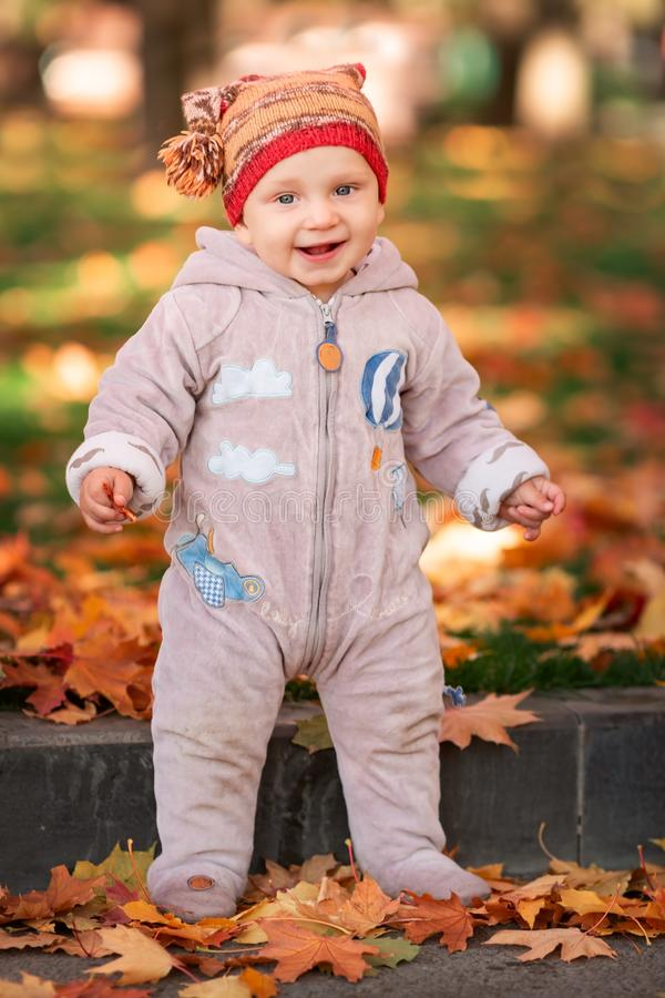 Cute little baby playing in autumn leaves royalty free stock images