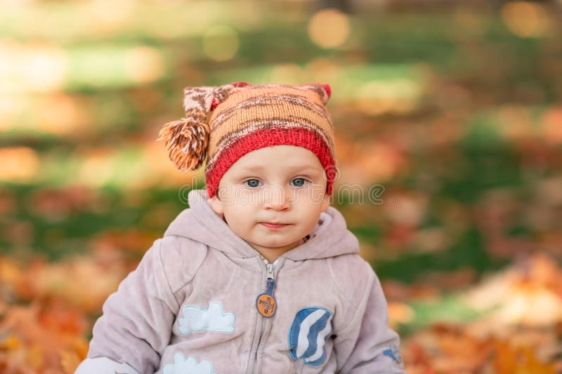 Cute little baby playing in autumn leaves stock photos