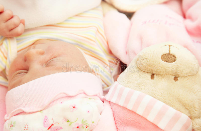 Download Cute little baby sleeping stock image. Image of infant - 17730611