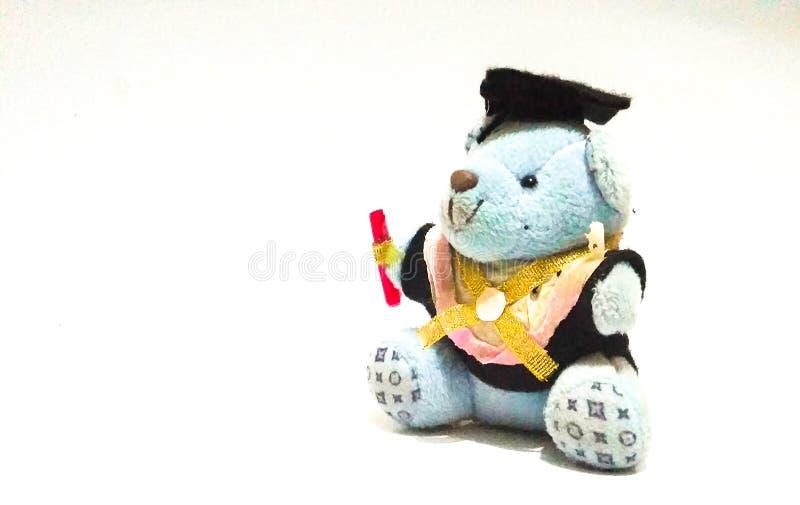 Cute little bear graduation doll 01. Cute little bear graduation doll stock photos