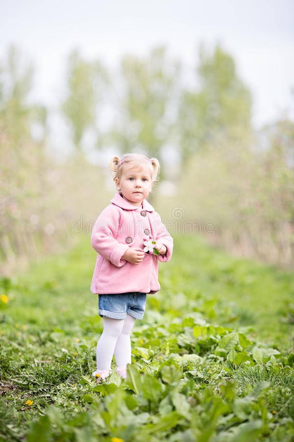 Cute little blond girl standing in orchard and holding a apple t royalty free stock photo